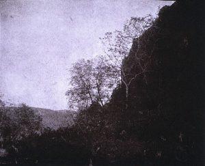 FAR. Falaise et arbres à contre-jour, négatif 16x20cm, col. part