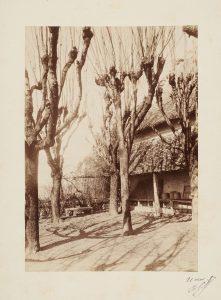 Anonyme, La terrasse de la maison de Ravier à Morestel, 11 avril 1887. Signé, non déchiffré. Épreuve sur papier albuminé, collé sur carton, signée datée. 17x12 cm. Coll. part.