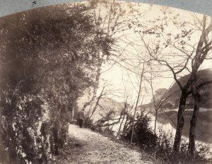 F. Thiollier, photogr. Ravier au bord du Rhône, 1889, coll. CBT