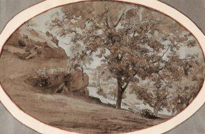 F.A.R., Italie, arbre au bord du ravin, crayon, plume, lavis d'encre