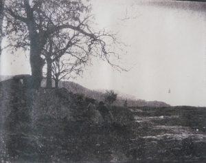FAR, Les deux Mme Ravier sous un arbre, positif papier, 18x14,1cm