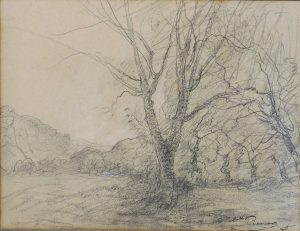 F.A.R., étude d'arbre mort, Morestel, crayon et craie