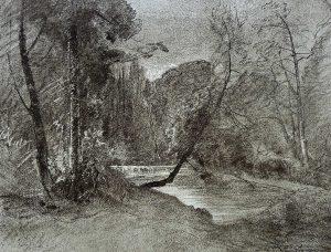 FT. heliogr Ravier Bords de l'Aix à Verneuil (Loire) pl 61